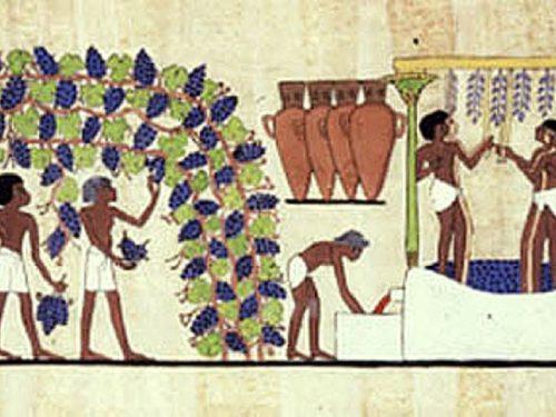EGITTO COTTO E MANGIATO. Le abitudini alla tavola dei faraoni. Dott.ssa Sabina Malgora – VIDEO