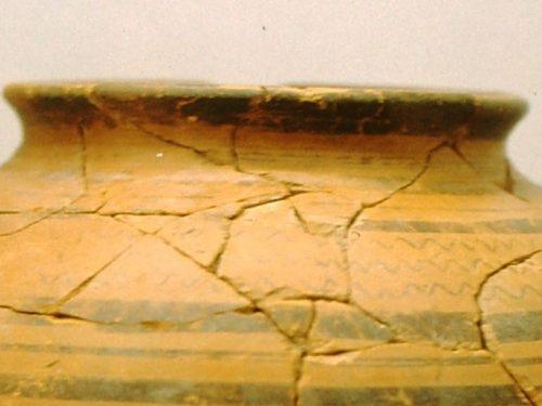 VISITE GUIDATE AL MUSEO ARCHEOLOGICO LOMELLINO, SABATO 15 E DOMENICA 16 MAGGIO